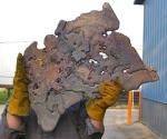 Splash poured bronze Herald wing before shaping